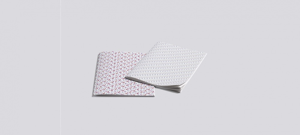Carnet Line dot notebook Large x2