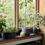 Cache pot & coupelle pour plante