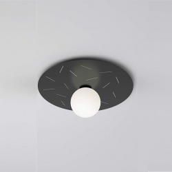 Plate and sphere Sliver perforation 49cm - cuts